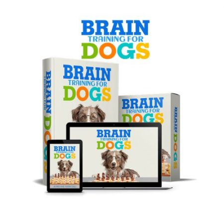 brain training for dogs products